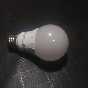 6 WT LED 2700K Lifelamp Bulb